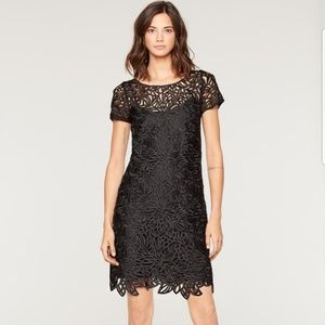 Milly Lace Chloe Dress